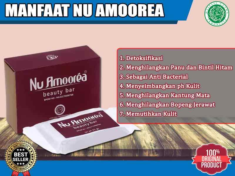 Inilah Daftar Nomor BPOM Sabun Nu Amoorea
