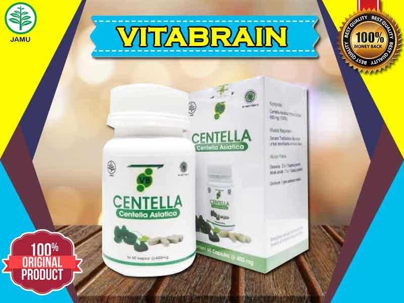 Inilah Manfaat Vitabrain Untuk Kecerdasan Otak